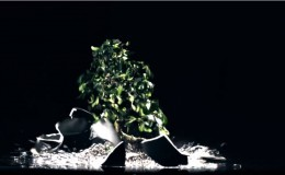 Vasco Rossi – Dannate Nuvole videoclip ufficiale